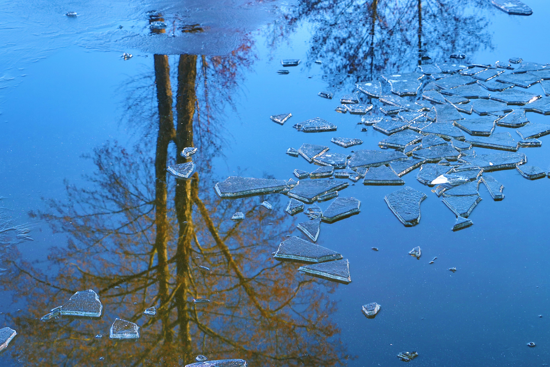 Kujan Jezioro Borowno
